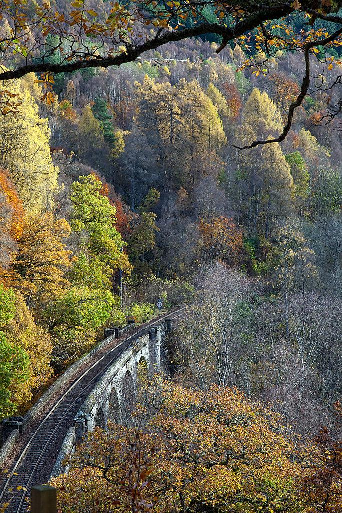 Autumn rails